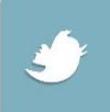 Опубликовать в Твиттере